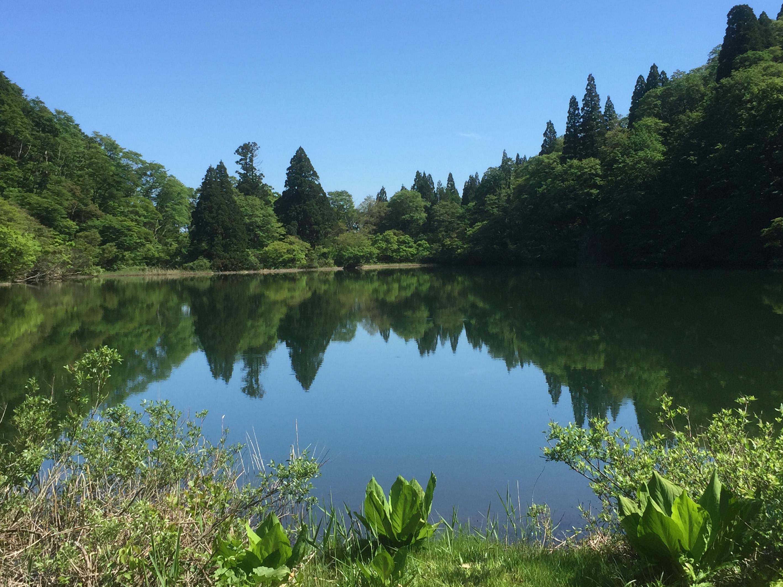 富山県 南砺市 縄が池