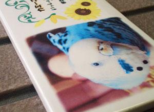 写真陶板制作例~ペット写真インコ
