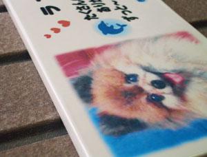 写真陶板制作例~ペット写真ポメラニアン