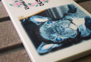 写真陶板制作例~ペット写真フレンチブルドッグ