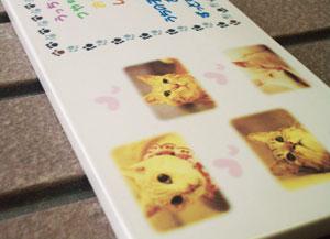写真陶板制作例~ペット写真ネコちゃん