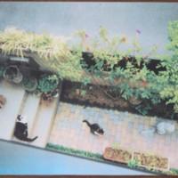 写真陶板制作例~猫たち