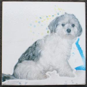 オリジナル写真陶板制作例~ペット写真