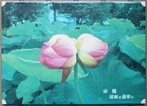 写真陶板制作例~双頭の蓮華
