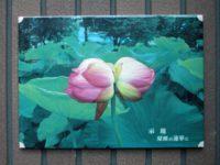 双頭の蓮華 蓮花 陶板